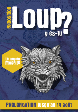 Web Expo Loups prolongations 266 378 002